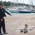 Εκπαίδευση σκύλων-Άλιμος