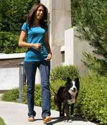 Photo of Βόλτα στην πόλη με το σκύλο μας