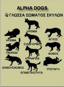 γλώσσα σώματος σκύλου